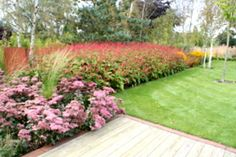 Timber decking with a steel edge strip. Large block planting for a bold effect by Paperbark Garden Design.