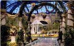 Bellagio Botanical Flower Gardens Las Vegas