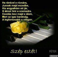 Szép estét Good Night, Herbs, Roses, Humor, Funny, Charms, Life, Nighty Night, Pink