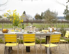 Colored yellow chairs for outdoor dining
