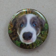 Border Collie puppy magnet Dog magnet Fridge magnet by BoosBooth, £4.00