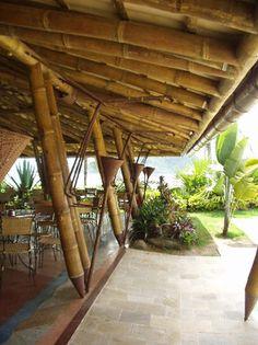 Estrutura De Bambu Gigante