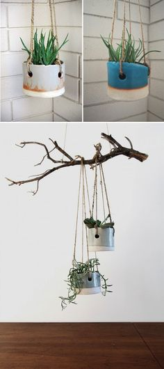 I have a bunch of catalpa tree branches sitting around. I could make some of them into this. (That's Happy: loving: hanging planters)