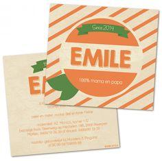 Emile | Geboortekaartjes | De Kaartjesfee geboortekaartjes