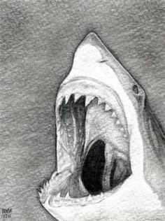 how to draw a shark head.this has been a request from both boys and girls.check out charcoal artist Robert Longo for inspiration Shark Drawing, Deer Drawing, Drawing Sketches, Drawing Guide, Fish Drawings, Realistic Drawings, Animal Drawings, Shark Head, Shark Art