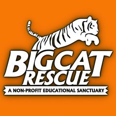 Big Cat Rescue logo. Big Cat Rescue, Tampa, Florida