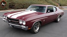 2520b7b8d2a 1970 Chevrolet Chevelle Super Sport No trim field 2 Door Hardtop for sale