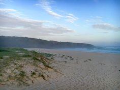 Seal Rocks, NSW - Australia   Beach life: sunset: wanderlust: travel photography