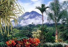 Costa Rica-2014 (PURA VIDA-Pure Life). 'Mega Combo Tour': Zip Line, Horseback Riding, Water Slide, Mud Bath and Hot Springs