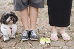 maternity phoot shoot idea with pet maternity photo with dog lifestyle outdoor photos gravida gestante