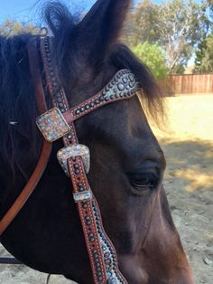 Cowboy headstall - lots of bling ✨