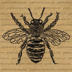 Large Bumble Bee queen Digital Image Download Sheet Transfer To Pillows Totes Tea Towels Burlap 0280 on Etsy, $1.00