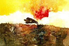Lone hawthorn   by Paul Steven Bailey