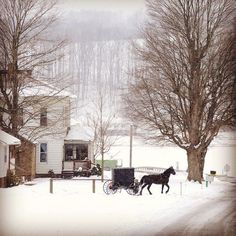 #winter in Amish Cou