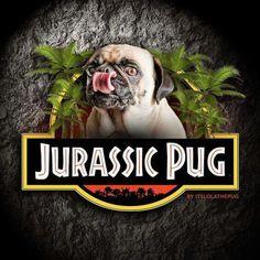 Jurassic Pug