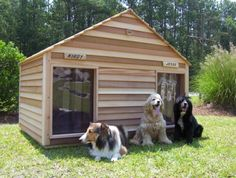 Duplex Dog House- I like the variation in the wood!