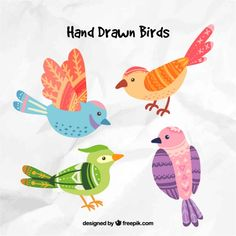 Hand drawn birds Fre...