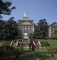 Howard University Washington D C Fortitude Delta Sigma Theta Sorority Inc