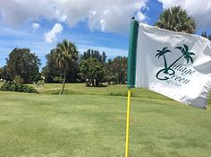 Village Green Golf Club -Book a tee time at 941 922 18 holes par 54 course, is one of the bests around when staying on vaation with www. Siesta Key, Florida Vacation, Where To Go, Wind Turbine, Golf Clubs, Golf Courses, Public, United States, Green