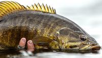 How to Catch Monster Smallmouth Bass | Field & Stream