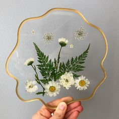 White Spring Buds Nature Lover Gift Gift For Her Natural Gift For Home Dried Wild Daisies Gold /& Pearls Coaster Paperweight