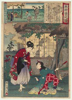 Artist: Toyohara Chikanobu (豊原周延) (1838-1912). Asaji Fields, No. 6