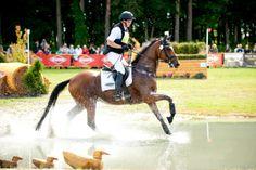 Festiwal Jeździecki Baborówko / Equestrian Festival Baborowko - aut. K. Boryna