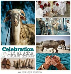 80+ recipes, crafts, decorating ideas and more for Eid al Adha