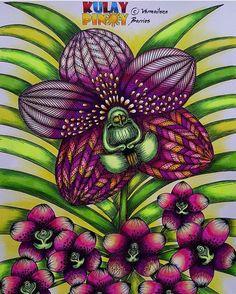 Inspirational Coloring Pages by @vddeguzman #inspiração #coloringbooks #livrosdecolorir #jardimsecreto #secretgarden #florestaencantada #enchantedforest #reinoanimal #animalkingdom #adultcoloring #johannabasford #milliemarotta #flowers