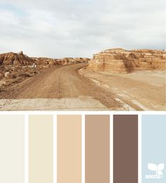 Design Seeds color palettes ... posted daily for all who love color.
