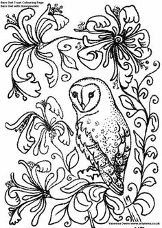 spring adult coloring | The Barn Owl Trust - Barn Owl colouring pages