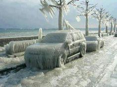 *Winter Versoix, Switzerland - Nature's Finest Captures*
