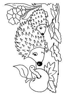 coloring page Hedgehogs on Kids-n-Fun. Coloring pages of Hedgehogs on Kids-n-Fun. More than coloring pages. At Kids-n-Fun you will always find the nicest coloring pages first! Cool Coloring Pages, Animal Coloring Pages, Coloring Pages To Print, Printable Coloring Pages, Adult Coloring Pages, Coloring Pages For Kids, Coloring Sheets, Coloring Books, Apple Coloring