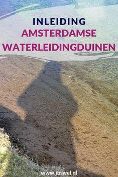 Regelmatig maak ik een wandeling in de Amsterdamse Waterleidingduinen en spot dan vossen, damherten, boomkikkers, vogels en paddenstoelen en geniet van de mooie natuur. Vanaf hier kun je doorklikken naar mijn fotoartikelen, #awd #zandhagedissen #amsterdamsewaterleidingduinen #wandelen #hiken #natuur #jtravel #jtravelblog