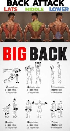 , fitness , 🔥 BACK ATTACK & LATS & MIDDLE & LOWER ✅ Consider the three main (basic) exercises on the development of the width of the back, exercises that give the. Gym Workout Chart, Six Pack Abs Workout, Weight Training Workouts, Gym Workout Tips, Dumbbell Workout, Pilates Workout, Fitness Workouts, At Home Workouts, Chest Workouts