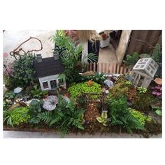 Millstone Market and nursery miniature gardens
