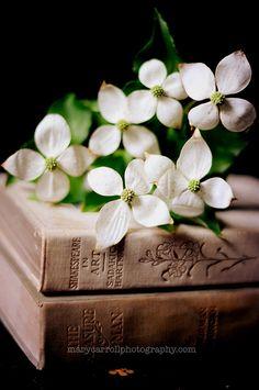 Pretty Books..
