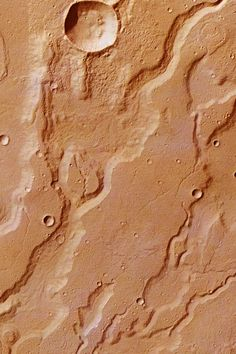 Dendritic river valleys and craters in Acidalia Planitia on Mars