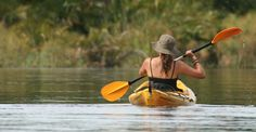 sea kayaking trips