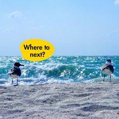 Wohin soll deine nächste Reise gehen? Auf www.justaway.com findest du Inspirierende Reise-Angebote zu Top-Preisen!  #justaway #travel #quotes #sea #fun #Urlaub #reisen #vacation #justawaycom