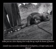 circus..this is horrible. i don't ever want to see an animal in these kind of conditions!!