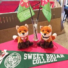 #AdmissionsVixens Briar and Rose are ready to take on their third #collegefair of the day! Stop by our table at #UVAwise to say hi! #travelseason2015
