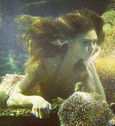 66 New Ideas Photography Fantasy Water Sirens H2o Mermaids, Mermaids And Mermen, Sirens, Rikki H2o, Water Aesthetic, Mermaid Fairy, Mermaid Pictures, Phoebe Tonkin, Merfolk