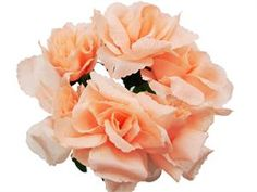 Silk Open Rose - Peach - 84/pk | eFavorMart