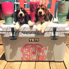 Stay cool by the pool this Summer with Southern Bliss! Get yours today! #southernbliss #southernblissapparel #bassethoundpuppieslovesouthernbliss