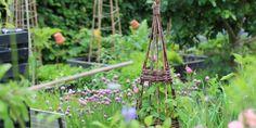 BERETNING FRA EN KØKKENHAVE - Stories from my kitchen garden