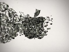 """Apple's Revenue Per Employee Is """"Off The Charts"""" 