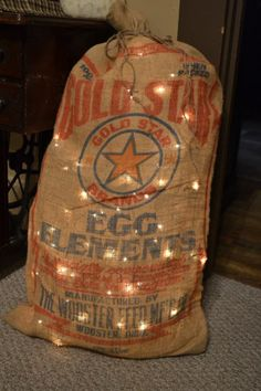 An old feed bag .. I added chicken wire inside the bag & mini lights . How cute is that ??