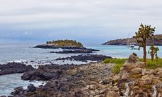 Barrington bay, Galapagos