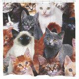 Cats for Days Shower Curtain | Sharp Shirter